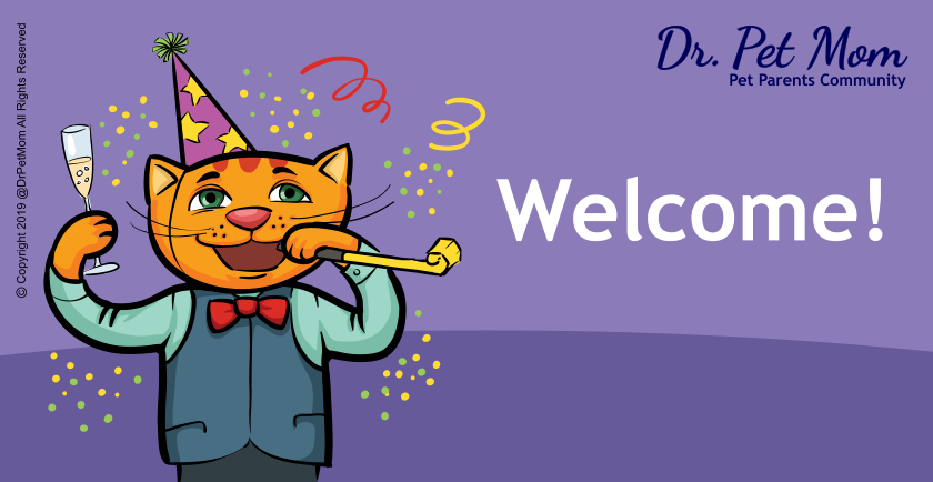 Welcome to Dr. Pet Mom! 🥳