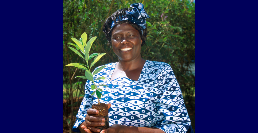 National Arbor Day and Remembering Wangari Maathai 🥳