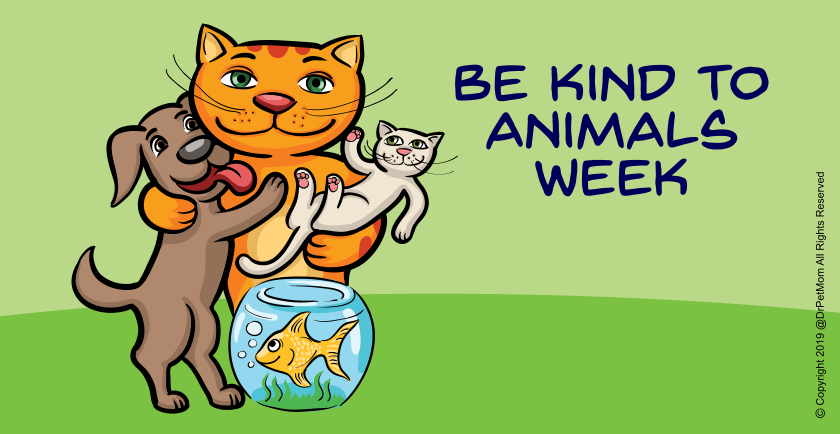 May 6-11: Celebrating Be Kind To Animals Week 🥳